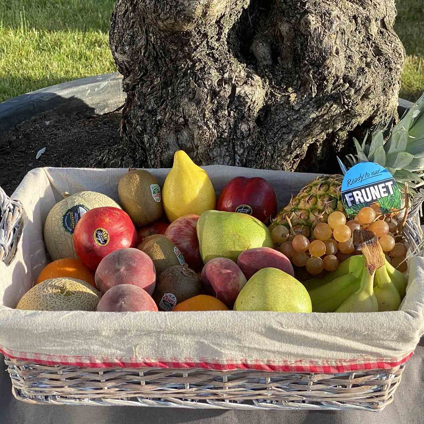 panier de fruits de 8kg