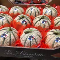 casier de melons
